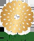 SunTrust-logo-2019_web